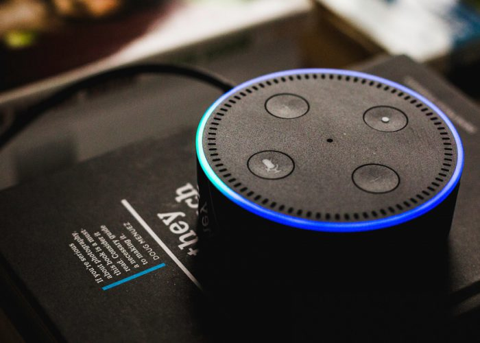 A Glimpse Into the Future: Are Smart Speakers the Next Big Thing?