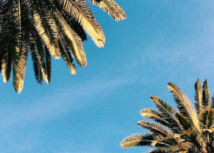 Florida | The Sunshine State