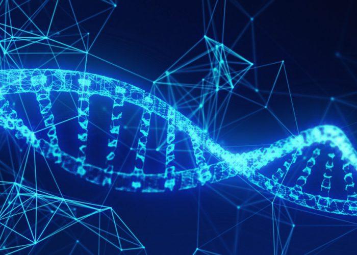 Blockchain Innovations in Healthcare